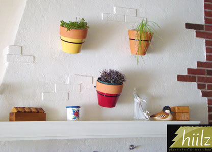 Hanging Plants With Adhesive Planter Hangers Flowers Pots